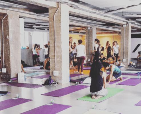 Personas haciendo Yoga en la sala YES