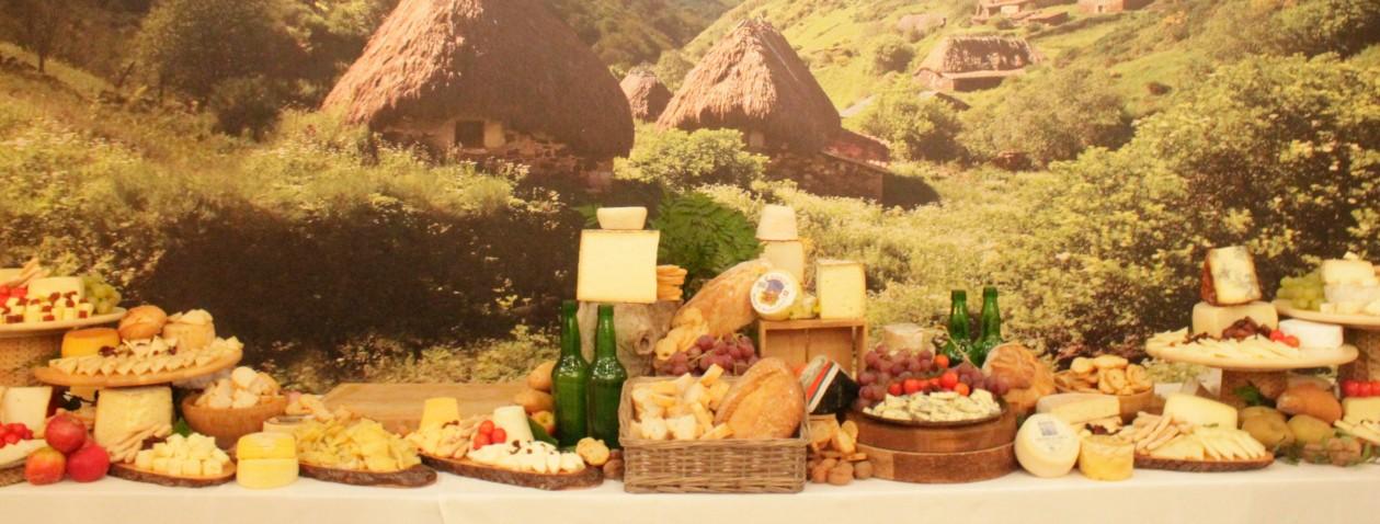 Gran número de quesos en un bodegón